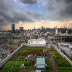 Agricultural Urbanism: Designing Cities as Edible Ecosystems