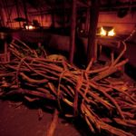 Ayahuasca: Fake Shamans and The Divine Vine of Immortality