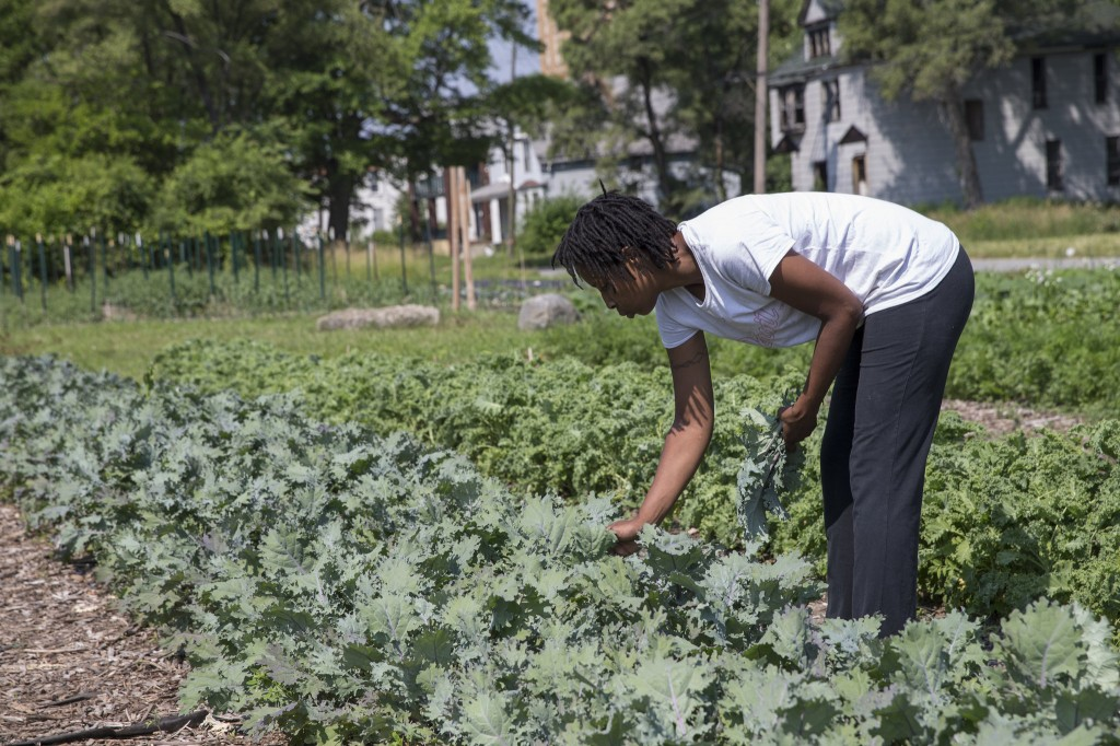 Detroit, urban farming