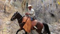 "The film 'Corazón Vaquero: The Heart of the Cowboy', documents the rural ""Californios,"" raising livestock in the way of their Spanish ancestors in the Southern Baja California mountains. Facing tourism development, road building, and cultural changes, the isolated ranchos still persist with their self-sustaining subsistence-based way of life."