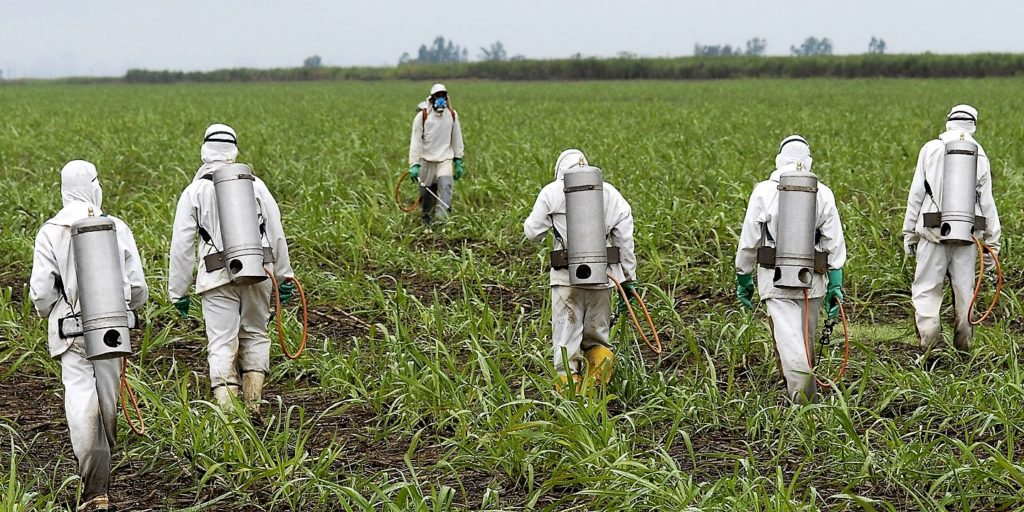 roundup, cancer, herbicide, glyphosate